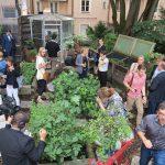 Dachgarten: Unter dem Motto Urban-Gardening ziehen sich die Köche dort unter anderem ihre eigenen Kräuter, Gewürze, Beeren und essbare Blüten.