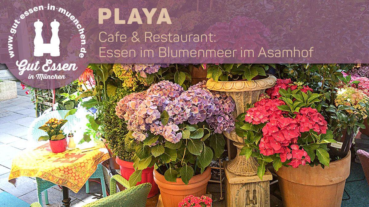 Das Cafe & Restaurant Playa im Asamhof