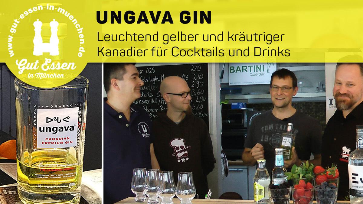 Ungava Gin – Leuchtend gelber Kanadier für Gin Tonics, Cocktails & Drinks